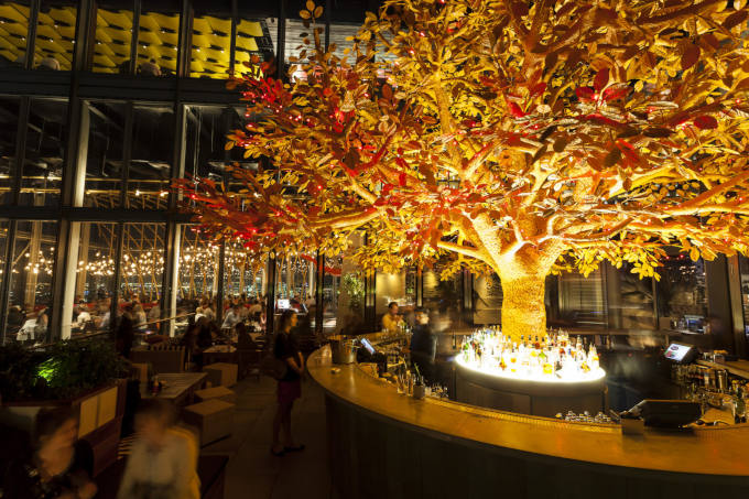 Tree Bar - Unusual Meeting Venues image